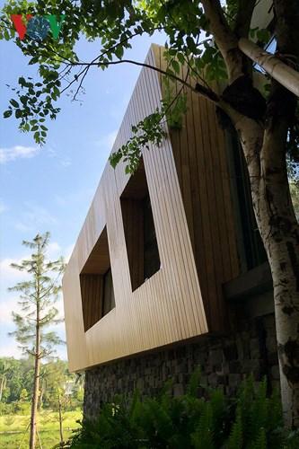 Biệt thự tuyệt đẹp ẩn mình trong rừng thông ở Vĩnh Phúc